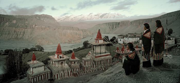 мустанг непал белгород